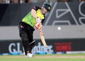 David Warner_T20_batting.jpg