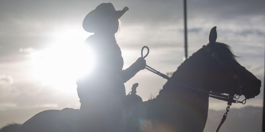 David Lloyd Horse Riding